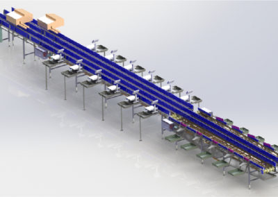 IQF Chicken Packing Line